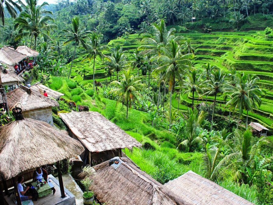 梯田是巴厘岛著名的梯田风光,主要集中在德格拉朗一带,位于乌布以北