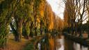 基督城雅芳河泛舟(Avon River)