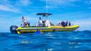 夏威夷欧胡岛海豚浮潜(小船)