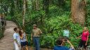 库兰达热带雨林一日游(单程巴士+单程缆车/火车+热带雨林公园含接送)