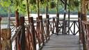 沙巴龙尾湾红树林一日游