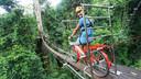 清迈美旺大象营半日游(可选丛林飞鼠飞跃+送香蕉和甘蔗)