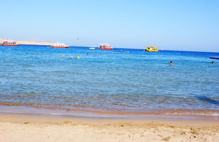 蒂朗岛浮潜一日游(沙姆沙伊赫出发)