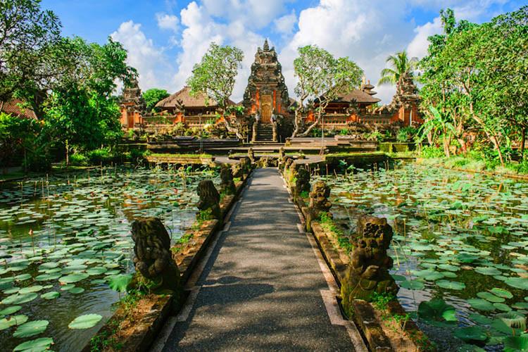 巴厘岛一日游(乌布丛林越野体验+特色餐+2小时露露spa