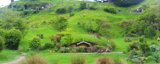 既有美景又有美食,新西兰五一旅游去哪里比较好