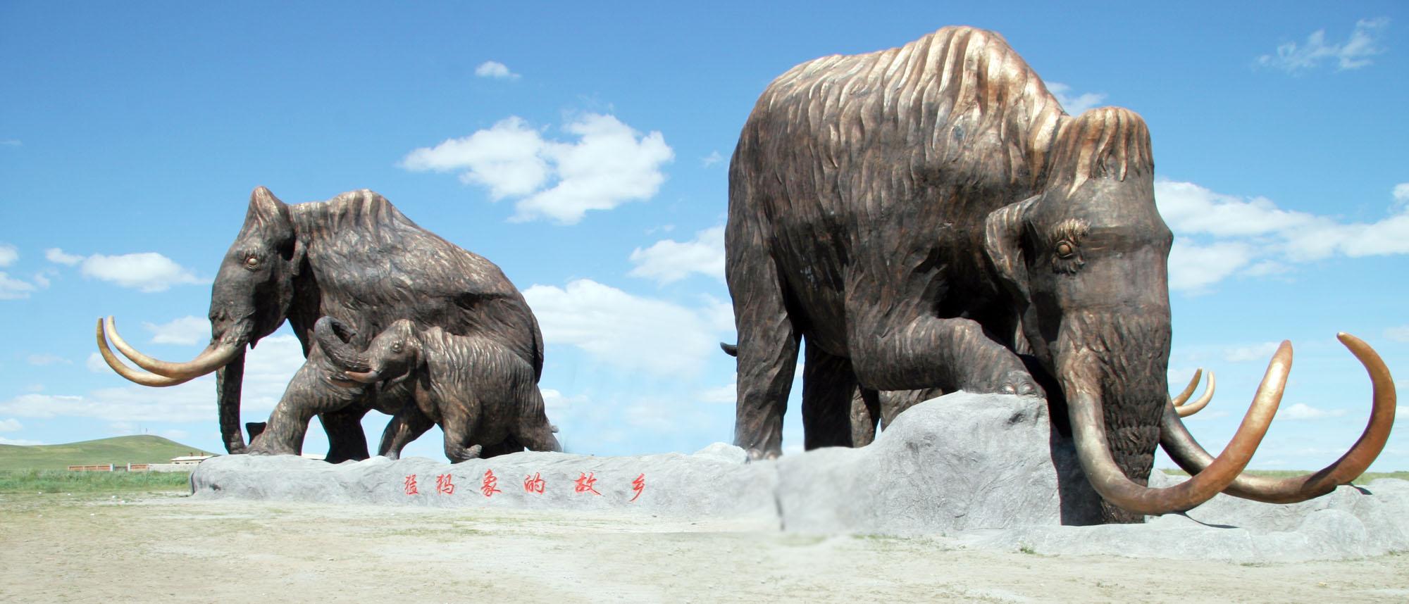 猛犸象牙化石图片_猛犸象_猛犸象画法