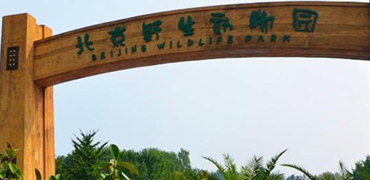 北京野生动物园门票及攻略