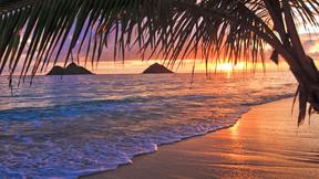 【超值奢玩】美国夏威夷5晚7天百变自由行【夏航北京直飞/私家沙滩超级乐园/威基基地标希尔顿】