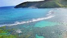 美国夏威夷5晚7天百变自由行【双岛DIY/3晚欧胡+2晚大岛/全程希尔顿】