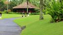 【西安到巴厘岛旅游】巴厘岛6晚8日游【西安出发/3天自由活动】