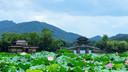 杭州自由行