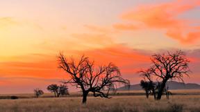 【世界文化遗产】纳米比亚12日游【辛巴红泥人部落/鲸湾出海/苏丝斯黎红色沙漠】