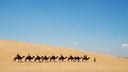 测试产品【美丽中国】宁夏:银川亲子5日游【爸爸去哪儿/沙坡头踏沙之旅】
