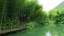 【休闲】南山竹海一日游