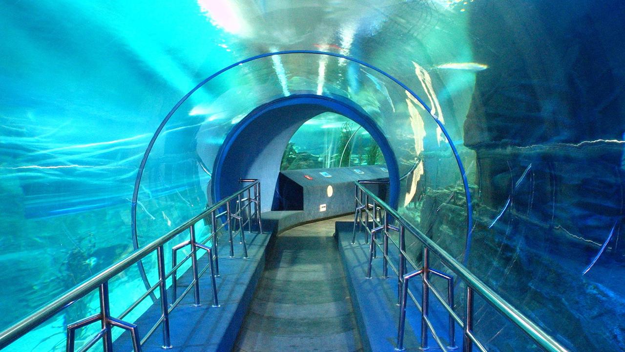 海底世界图 海底世界 海底世界团购 符号久吧图片站