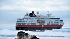 【南极巡游】精致新月号 巴西 阿根廷 秘鲁 南极半岛巡游27天之旅