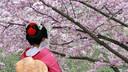 """日本东京闺蜜游东瀛6日半自助游【跨越年龄和性别的""""闺蜜游""""】"""
