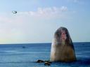 【头条】海南旅游攻略必去景点:三亚婚纱摄影工作室前