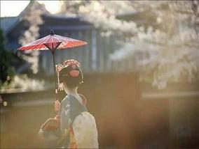热海艺妓+伊豆私汤<br />东京品米其林美食