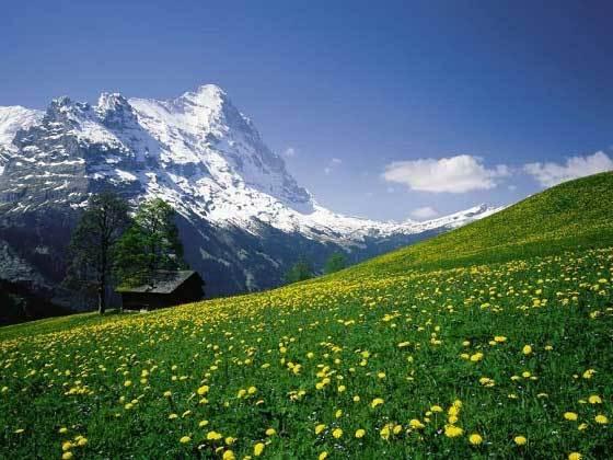 歐洲瑞士7晚9天百變自由行【漫游瑞士精髓/沉浸山水童話/贈38城市聯運機票】