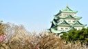 【性价比之选】日本本州和韵东瀛6日半自助游【神户牛肉/和服换装/艺伎晚宴/东京自由活动】