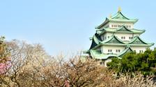 【销量明星】日本舒心本州东京+富士山+大阪+京都6日跟团游
