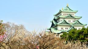 【销量明星】日本舒心本州东京 富士山 大阪 京都6日跟团游