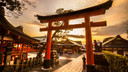 """皇家加勒比""""海洋量子号""""上海-大阪-神户-名古屋-上海 7晚8天"""