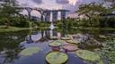【超值爆款】新加坡4晚6天百变自由行【薰衣草V酒店/人气酒店/交通位置优越】