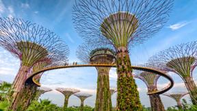 新加坡、马来西亚6-7日游【升级2晚马来西亚国际五星PJ希尔顿或同级/打卡哈芝巷 滨海湾花园灯光秀 甘榜格南】