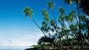 【春节班期】美国夏威夷5晚7天百变自由行【欧胡岛一地/大韩或日本航空转机/智选假日】