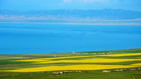 【购实惠】大美青海:青海湖+茶卡盐湖+门源+祁连卓尔山当地跟团三日游