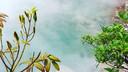 台湾中部东部泡汤体验7晚8天百变自由行【冬日台式温泉暖洋洋/日月潭阿里山经典半自助】