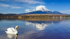 【至尊之旅】日本本州双古都双温泉6天美食至尊之旅【广州往返】