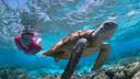 【一价全含珊瑚之恋】优品澳大利亚凯恩斯(含墨尔本)全景10天【无购物/国航直飞】