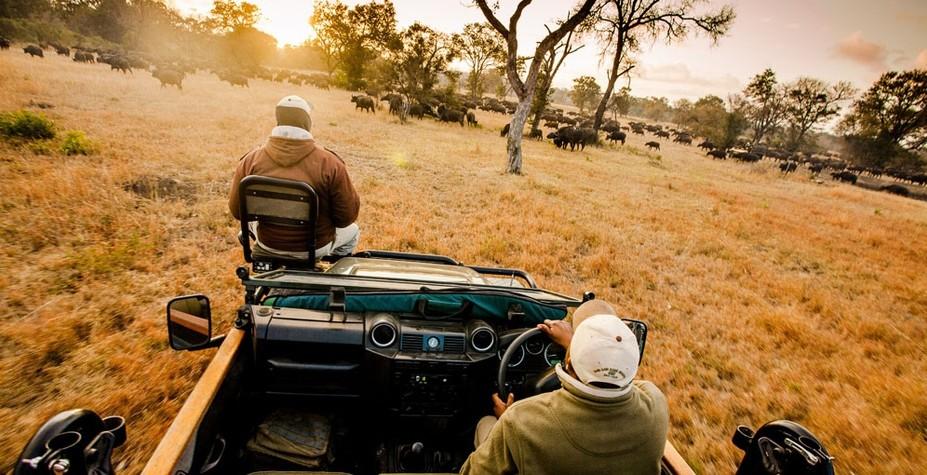 南非 狂野之路