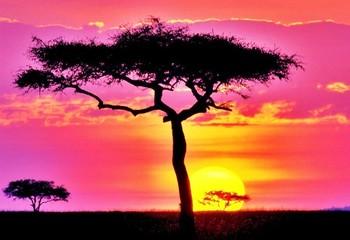 南非 闪耀彩虹之国