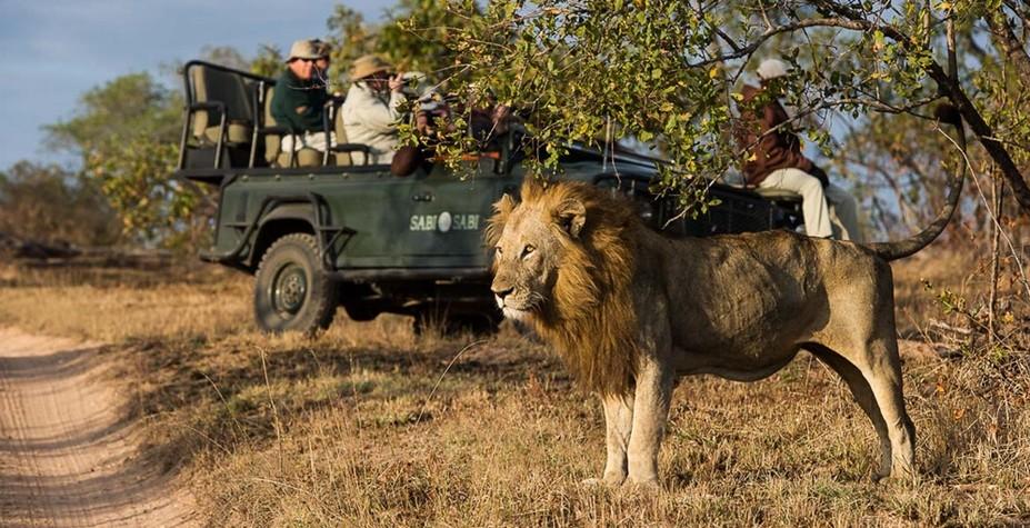 南非&莫桑比克 野奢假日