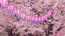 【童话白川乡】日本本州全景和风尊致6-7日游【全日空或国航深航/全景游览/饕餮美食/一晚温泉/富士摩天轮/7天行程升级/3月15日起樱花祭】
