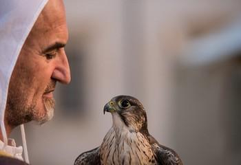 迪拜 沙漠中的贵族