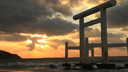 【精致小众游】日本九州隐世秘境屋久岛5日4晚跟团游