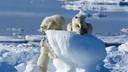 北极&北欧 北极熊王国11晚13天私享游