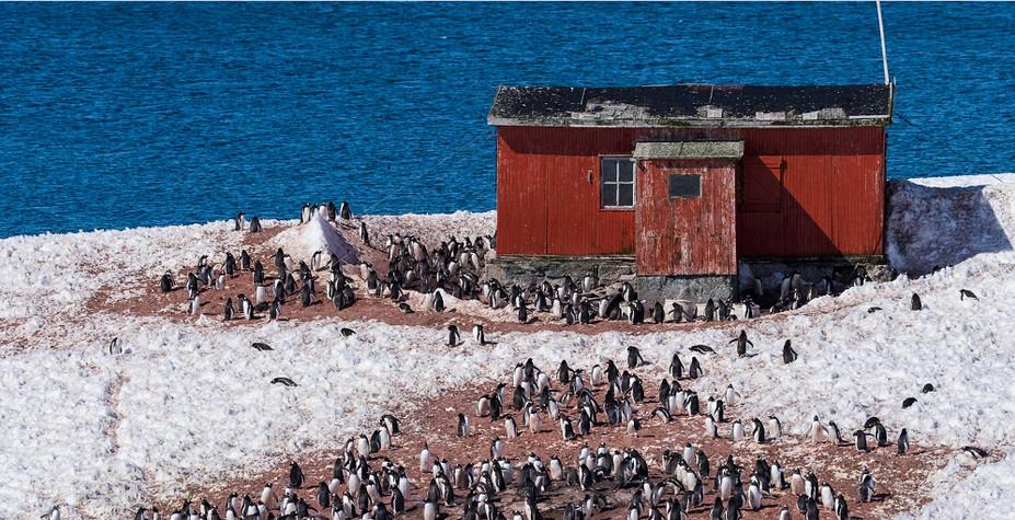 南极&阿根廷 远航世界尽头