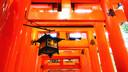 【人气热卖】日本京都+大阪双城5晚6天百变自由行【199漆器体验/文化匠心】