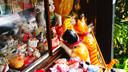 """意大利歌诗达""""赛琳娜号""""上海-鹿儿岛-下关-上海5晚6天"""