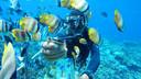 巴厘岛一日游