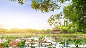 【休閑、城市】杭州風光1日游