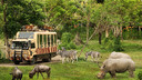 【奇妙动物夜】巴厘岛5晚7天半自助【1晚野生动物园/4晚海边国际五星/1日专属车导】