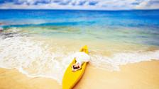 【超值惠选】菲律宾长滩岛4晚6天半自助【厦门航空/S3海边天堂花园/含交通】