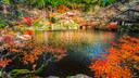【红叶狩秋味】日本九州4晚5天百变自由行【坐由布院之森列车/探龙猫小镇】